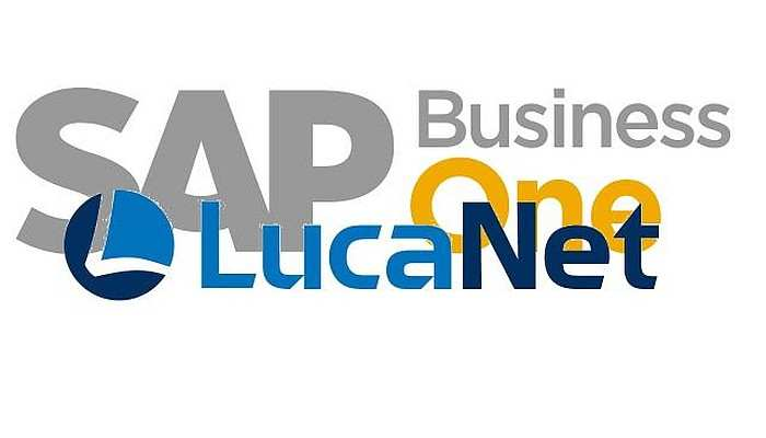 LucaNet Group Report für SAP Business One