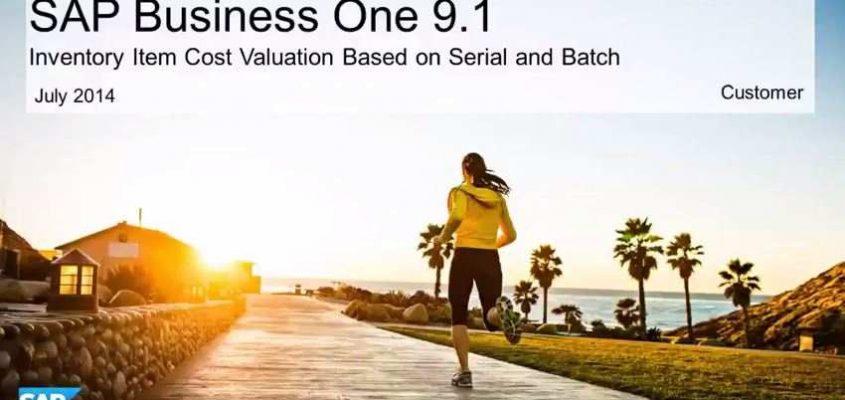 SAP Business One 9.1- Bewertung auf Basis von Chargen und Seriennummern