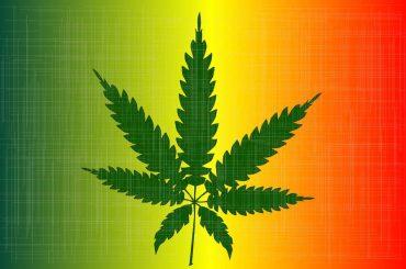 Cannabis_SAP_B1