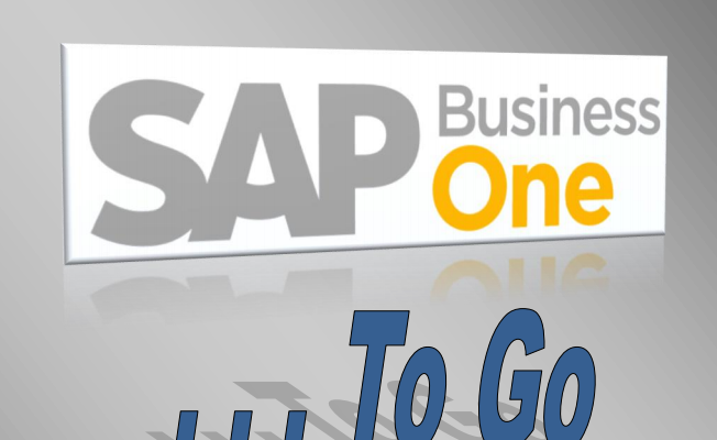 SAP Business One 9.1 – TO GO