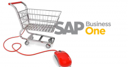 SAP_Business_one_eCommerce
