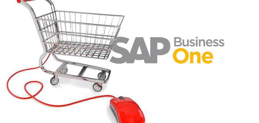 ShopERP – SAP Business One wird zum eCommerce System