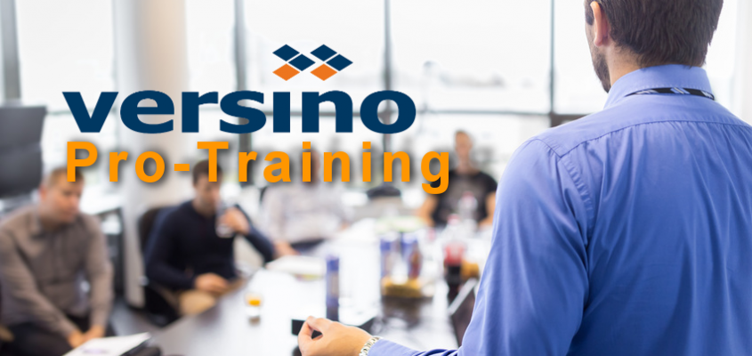Versino Pro Training: Reporting-Lösung für SAP Business One