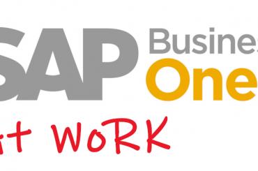 SAP B1 at Work