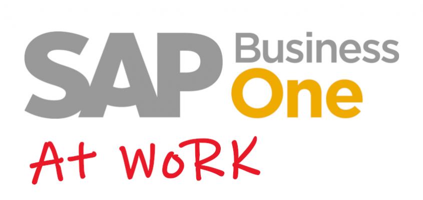 Die Lieferantenanfrage in SAP B1 über das Web erfassen