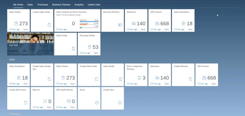 SAP Business One Web Client